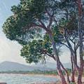 Beach Of Juan Les Pins by Claude Monet