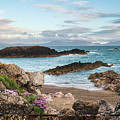 Beautiful Landscape Image Of Rocky Beach With Snowdonia Mountain by Matthew Gibson