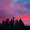 Beautiful Sunrise by Nick Gustafson