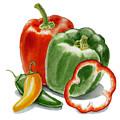 Bell Peppers Jalapeno by Irina Sztukowski