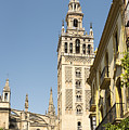 Bell Tower - Cathedral Of Seville - Seville Spain by Jon Berghoff