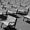 Benches by Perry Webster