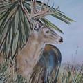 Berry Buck by Diann Baggett