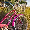 Bicycle At The Beach II by Debra and Dave Vanderlaan