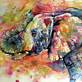 Big Colorful Elephant by Kovacs Anna Brigitta