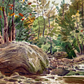 Big Rock At Sope Creek by Donald Maier