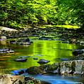 Big Sandy Creek Reflections by Dale Kauzlaric