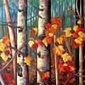 Birch And Maple by Brenda Loschiavo