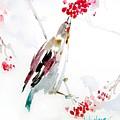 Bird Painting by Lulu Cheng
