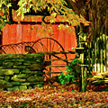 Birdhouse Chair In Autumn by Jeff Folger