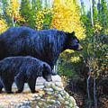 Black Bear And Cub by Charles Wallis