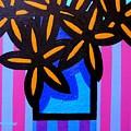 Black Eyed Flowers  by John  Nolan