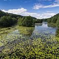 Black River Hancza In Turtul.  by Mariusz Prusaczyk