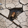 Blair Cracked Mud 1695 by Bob Neiman
