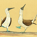 Blue Footed Boobies by Juan  Bosco