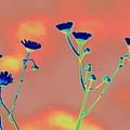 Blue Mood by Anita Goel