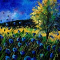 Blue Poppies  by Pol Ledent