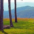 Blue Ridge Mountains - Virginia 2 by Frank Romeo