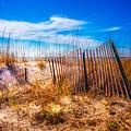 Blue Sky Over The Dunes by Debra and Dave Vanderlaan