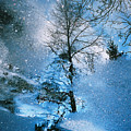 Blue Winter - From The Cycle - Straight From The Plate by Jolanta Kubica