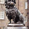Bobby Statue, Edinburgh, Scotland by Karol Kozlowski