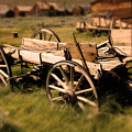 Bodie Wagon by Chris Brannen