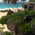 Bottom Bay Barbados by Thomas R Fletcher