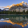 Bow Lake And Crowfoot Mountain by Yves Marcoux