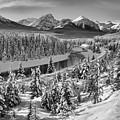 Bow Valley River View Black And White by Adam Jewell
