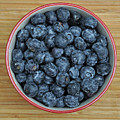 Bowl Of Fresh Blueberries by Perl Photography