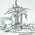 Broken Pot Bamboo by Jhiatt