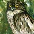 Brown Fish Owl  by Sasitha Weerasinghe