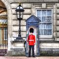 Buckingham Palace Queens Guard Art by David Pyatt