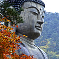 Buddha In Autumn by Michele Burgess