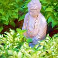 Buddha In The Garden by Tom Singleton