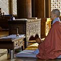 Buddhist Monk In Prayer by Michele Burgess