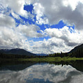 Bull Lake Reflection by Tracy Chappell