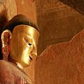 Burmese Buddha by Michele Burgess