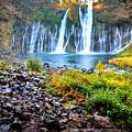 Burney Falls  by Kelly Wade