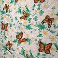 Butterflies And Daisies - 1 by Bruce Cohose