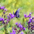 Butterfly Beauty by Kerri Farley