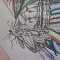 Butterfly Light by Theodora Dimitrijevic