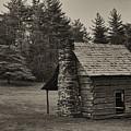 Cabin On The Blue Ridge Parkway - 15 by Joye Ardyn Durham