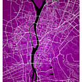 Cairo Street Map - Cairo Egypt Road Map Art On Colored Backgroun by Jurq Studio