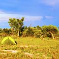 Camp Ground Near Kasane In Botswana by Marek Poplawski