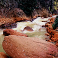 Canyon Creek Ouray Colorado by Tom Fant