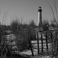Cape May Lighthouse   by Bob Cuthbert