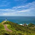 Cape Reinga by P S