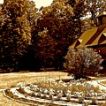 Carriage House Garden by Elizabeth Tillar