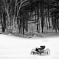 Carriage In A Field Of Snow by Rich Despins